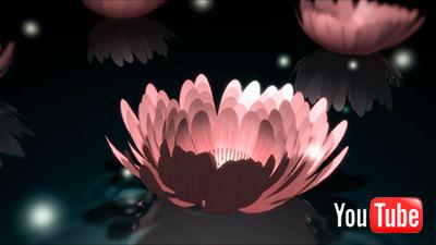 C4D動画「闇に咲く」