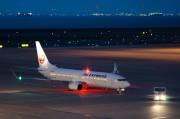 JAL B737-800 JA344J