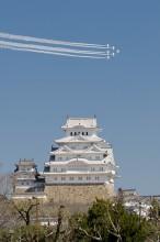姫路城とBI