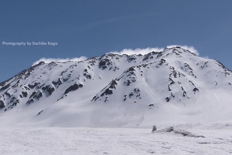 立山 雪の大谷