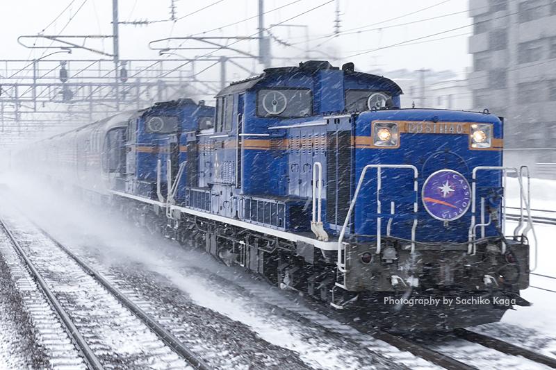 冬の北海道、カシオペアとはまなす