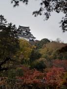 琵琶湖紅葉めぐり